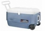 NEVERA IGLOO MAXCOLD ROLLER60